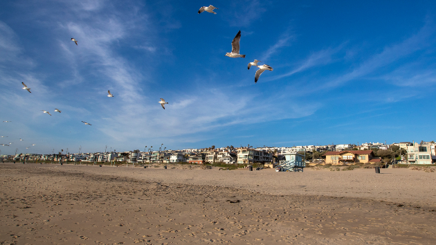 Birds take flight on the beach between 26th and 27th Streets at Bruces Beach in Manhattan Beach. Credit: Allen J. Schaben / Los Angeles Times via Getty Images